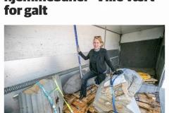 Forberedelser-til-utarbeidelse-av-Skulpturpark-ved-Geologisk-Institutt-Universitetet-i-Tromsø-Kunstner-Knut-Fjørtoft-kurator-KsN-Solstad-vår-2020-Oppføring-høst-2021-1